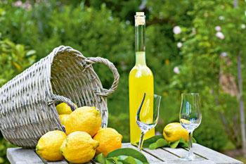 pays du citron - menton